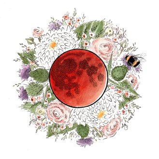Blood Moon by Darcy Goedecke